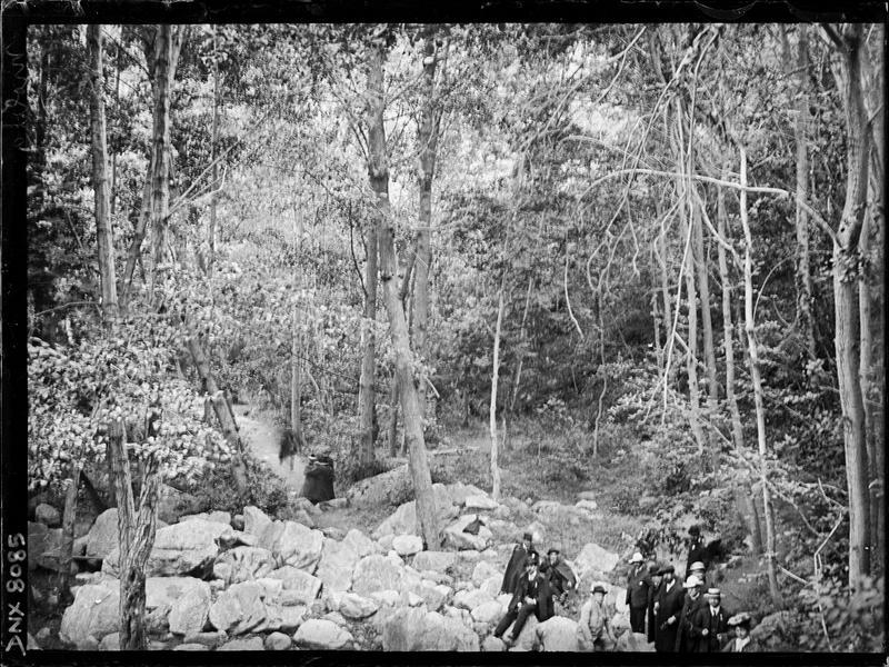Paysage de montagne : promeneurs dans une forêt de feuillus