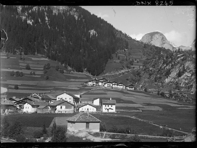 Paysage de montagne : chalets, champs cultivés, forêt