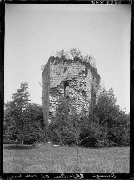 Donjon en ruine de l'ancien château