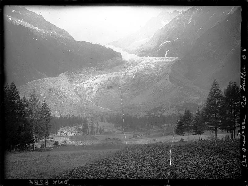 Paysage de montagne : le glacier d'Argentière, arbres et cultures au premier plan