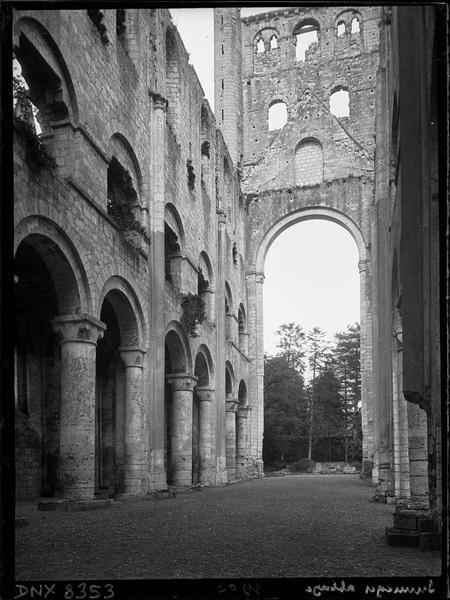 Ruines de l'église abbatiale, intérieur : nef vers l'est
