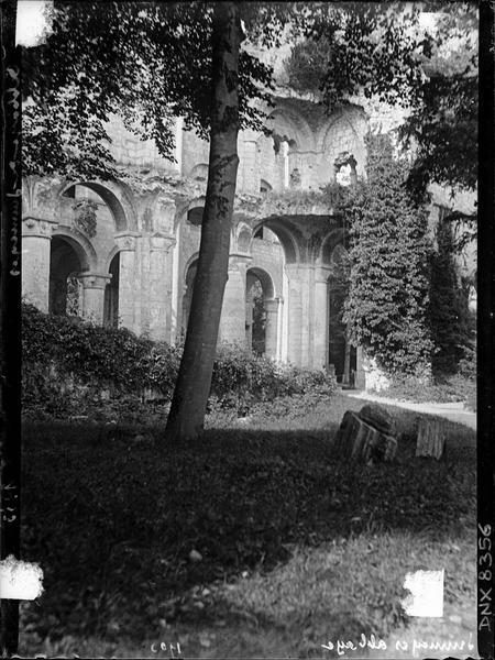 Ruines de l'église abbatiale, intérieur : arcades côté sud en partie cachées par la végétation