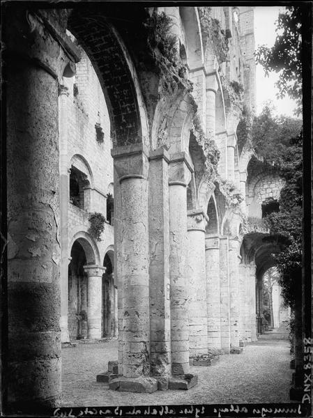 Ruines de l'église abbatiale, intérieur : bas-côté sud