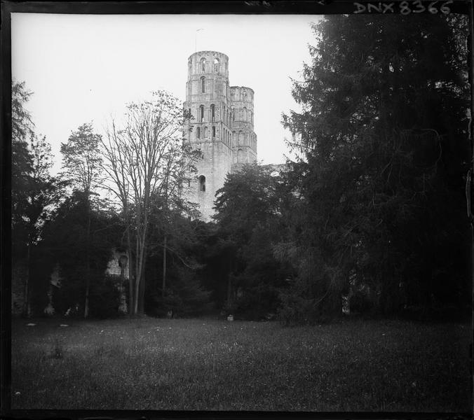 Ruines de l'église abbatiale : tours de la façade ouest en arrière-plan du parc