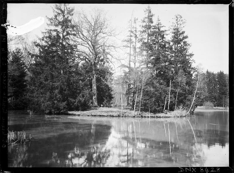 Ile sur l'étang de l'obélisque dans la forêt de Crécy