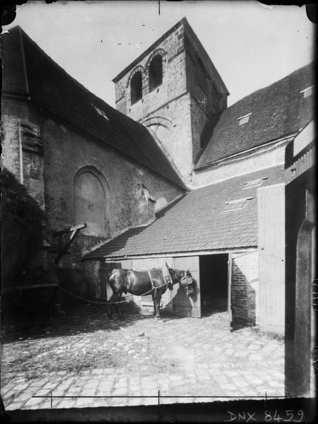 Eglise abbatiale : tour, angle nord-est, cheval de trait harnaché