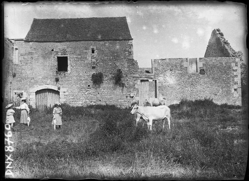 Bâtiments en ruines, vaches et promeneuses au premier plan