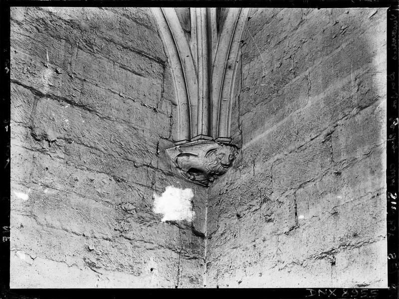 Donjon, intérieur, troisième étage : culot sculpté d'un lion ailé