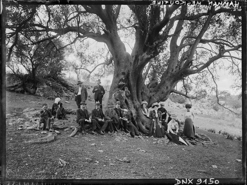 Portrait collectif : Européens assis au pied d'un grand arbre