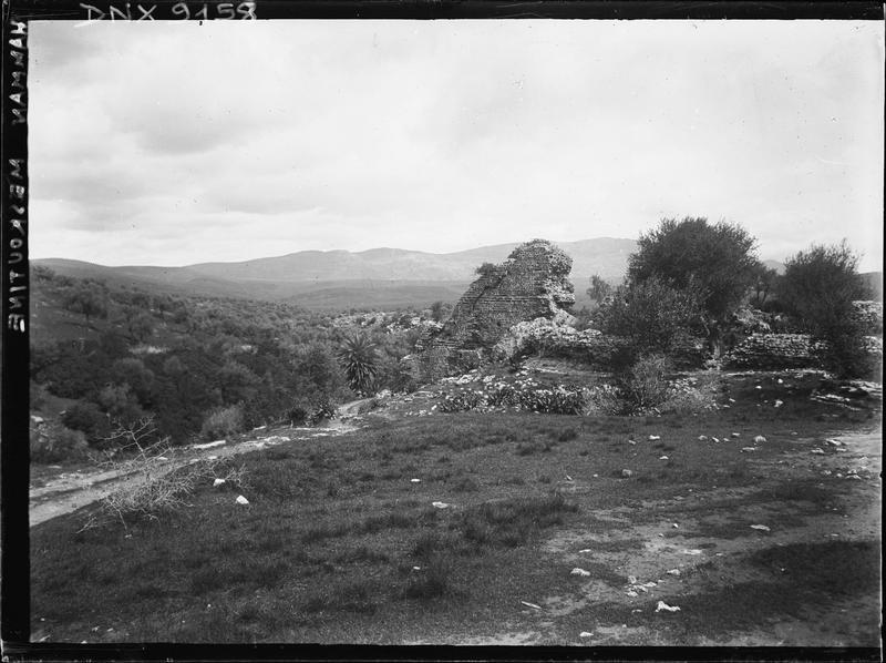 Ruines parmi les broussailles