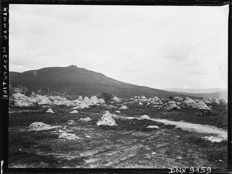 Paysage parsemé de cônes de pierre