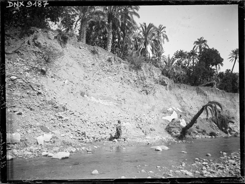 Talus planté de palmiers au bord de l'oued