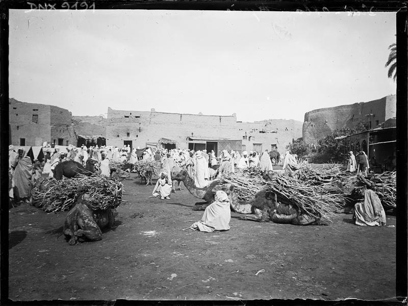 Le marché arabe : chameaux portant des fagots et marchands de bois