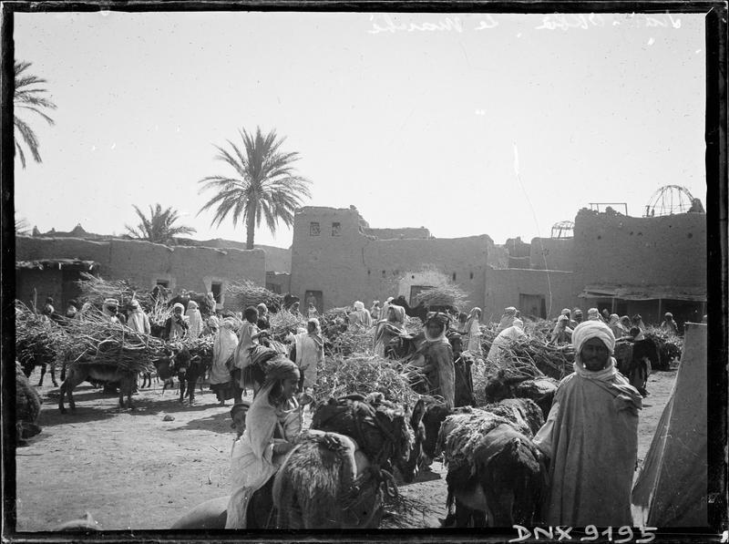 Le marché arabe : animaux portant des fagots et marchands de bois