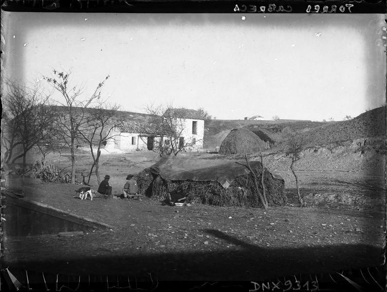 Habitation et huttes de branchages