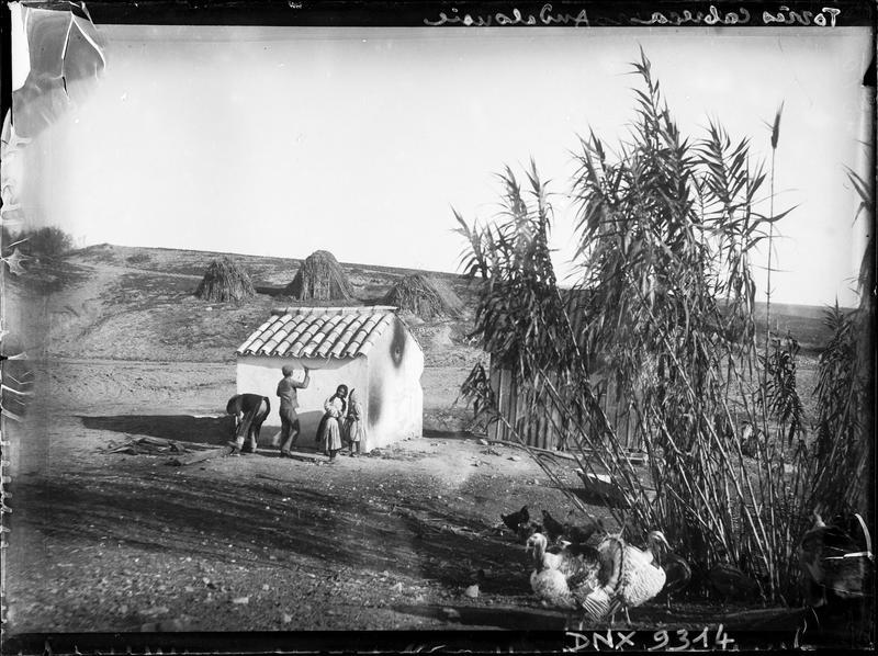 Cabane et huttes de branchages, dindons au premier plan