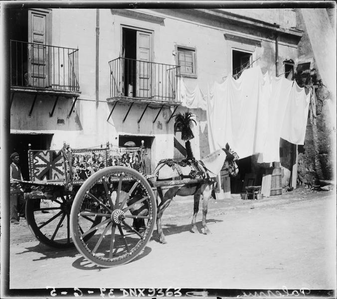 Charrette peinte sicilienne tirée par une mule