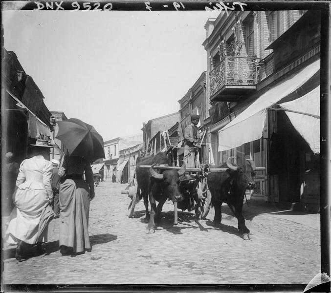 Attelage de boeufs et passantes dans la vieille ville