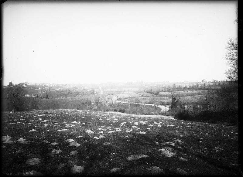 Paysage rural : champs, pâturages et haies