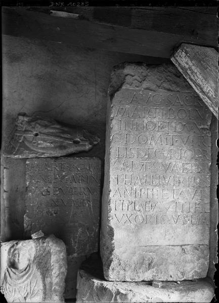 Stèles en pierre inscrites en caractères latins