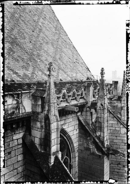 Pinacles, gargouille et détails de la toiture