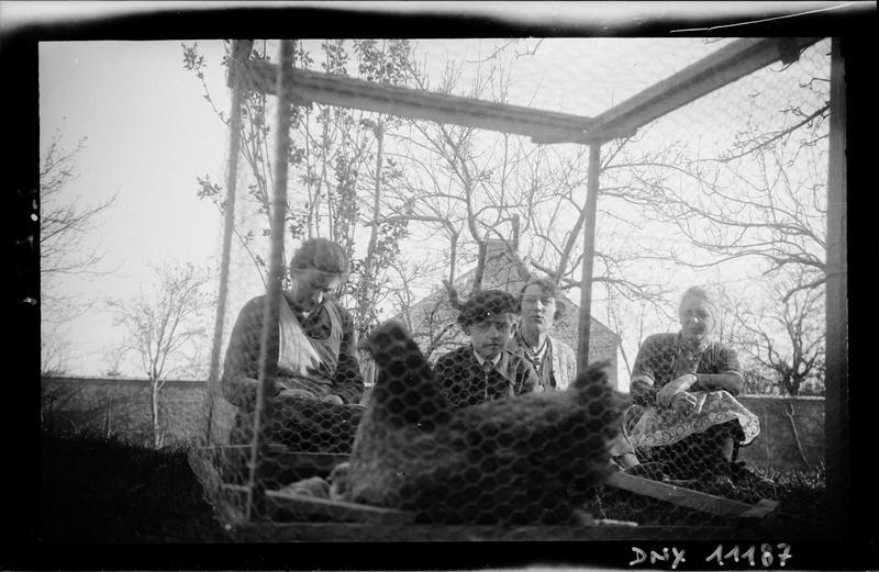 Poule dans une cage grillagée, quatre personnes à l'arrière-plan