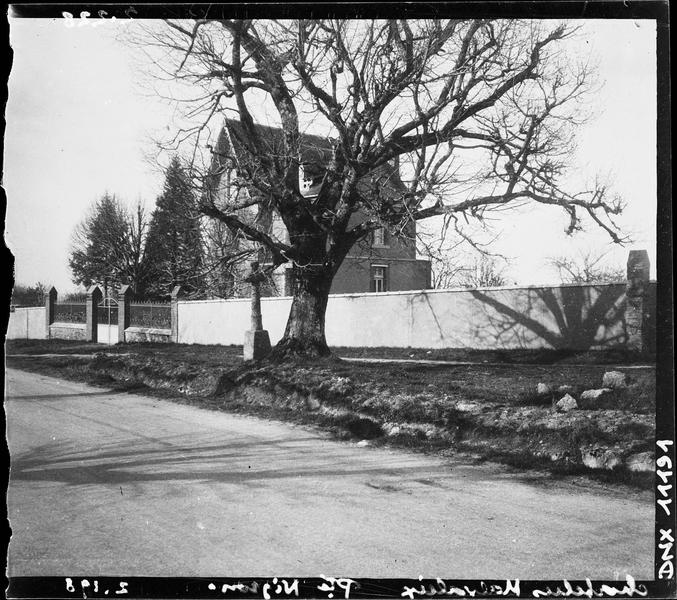 Mur de clôture et arbre au premier plan