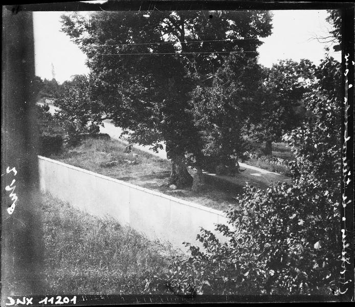Paysage rural : tilleul et croix derrière un mur de clôture