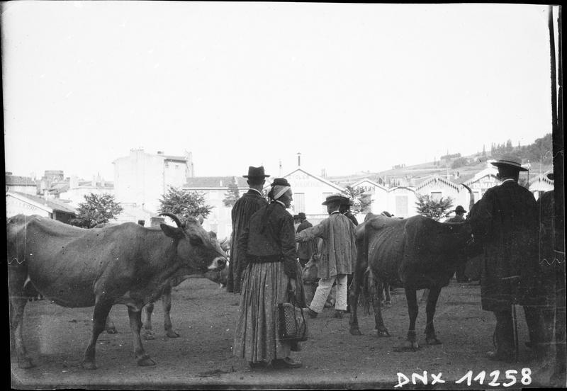 Marché aux bestiaux : Auvergnats en costume traditionnel