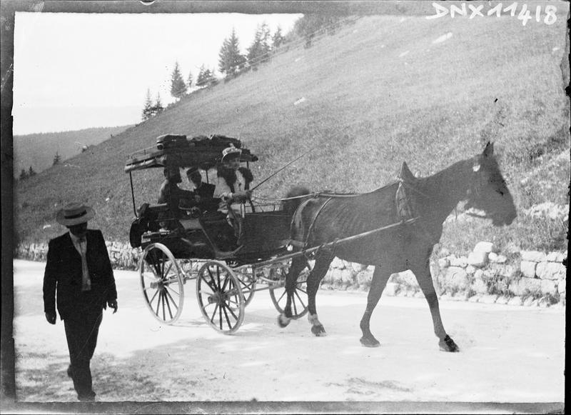 Carriole tirée par un cheval
