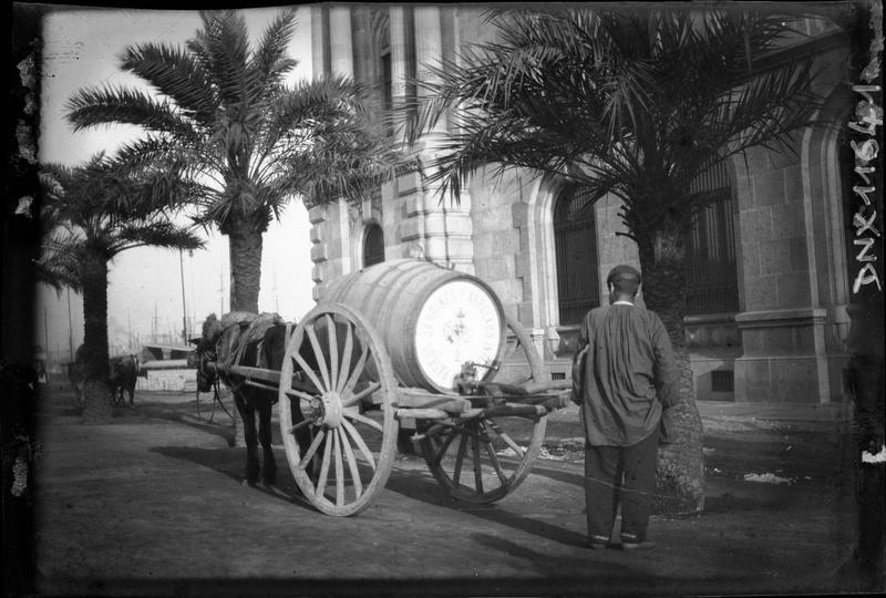 Carriole hippomobile transportant un tonneau, dans une rue bordée de palmiers