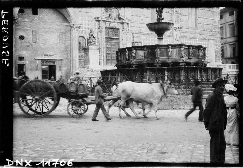 Vue d'ensemble, en arrière-plan d'une charrette tirée par des boeufs