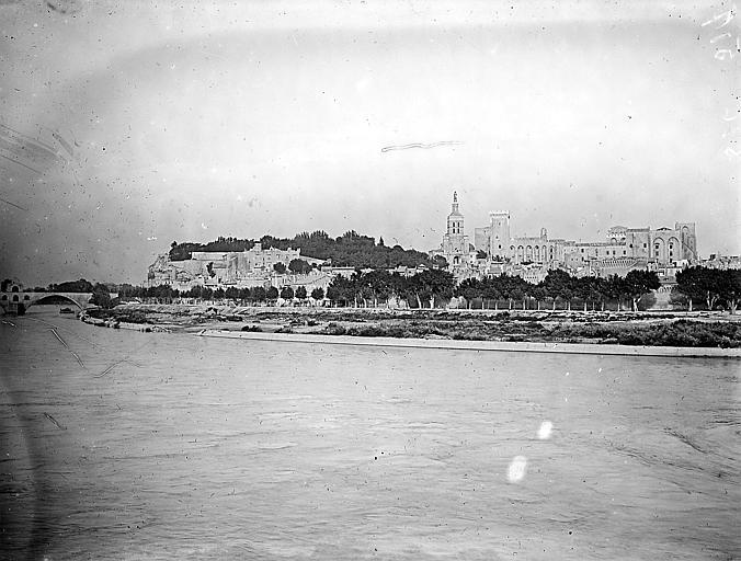 Vue du palais, du jardin et d'une partie du pont Saint-Bénézet depuis la rive gauche du fleuve