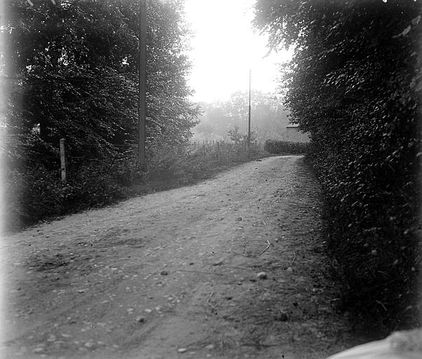 Paysage: une rue