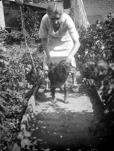 Femme et chien dans un jardin potager