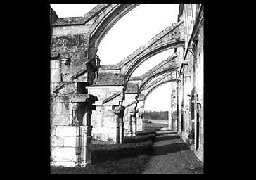 Cloître, ruines et arcs-boutants