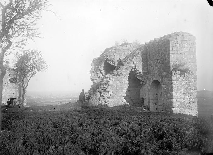 Ruines du château de Castelnau de Lévis