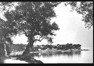 Route de Beaulieu, avant la construction de la villa Kerylos