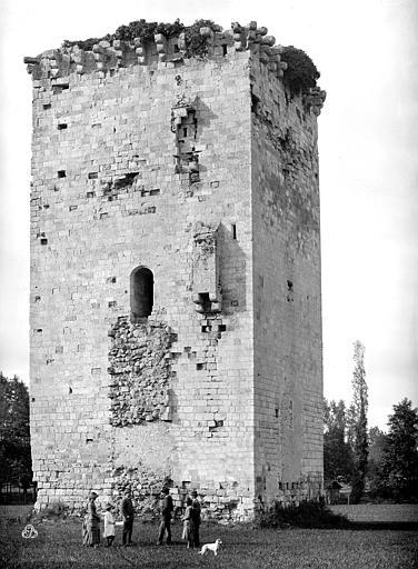 Château fort dit Tour de Veyrines