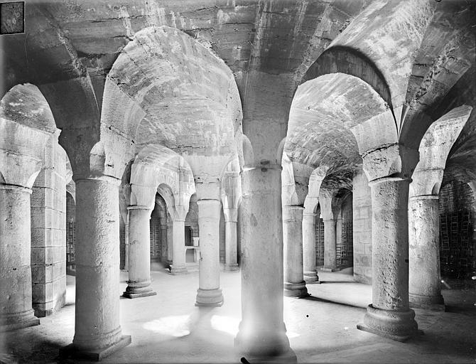 Crypte Saint-Bénigne : vue d'ensemble vers le sud-est