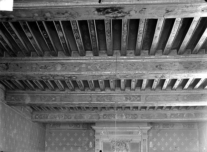 Salle des avocats : plafond