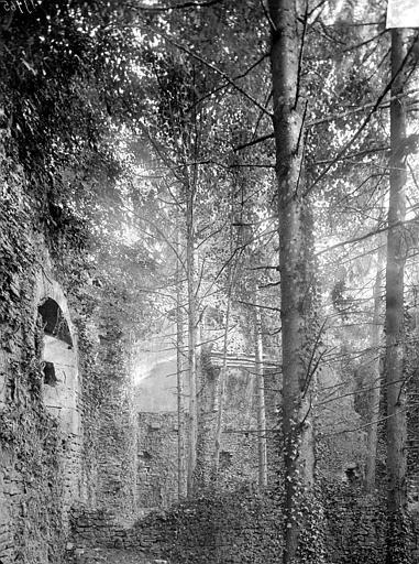 Aile ouest : Grande salle avec cheminées