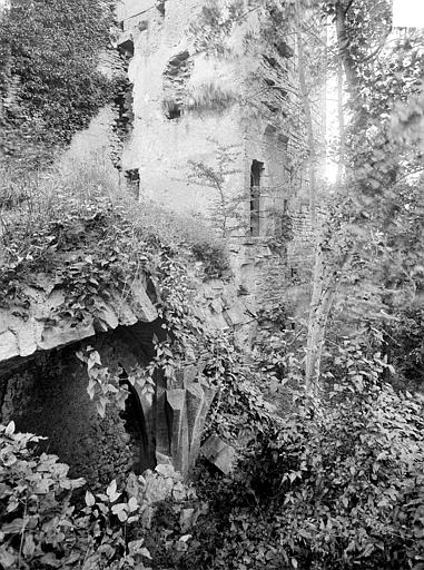 Donjon et caves, côté sud