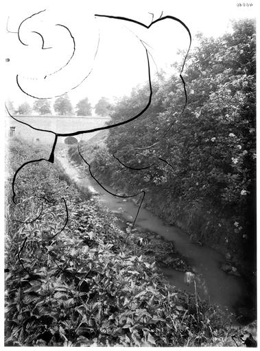 Vue des bords de la rivière