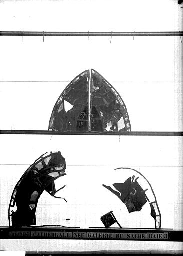 Vitrail, galerie du sacre sous la grande rose, panneaux