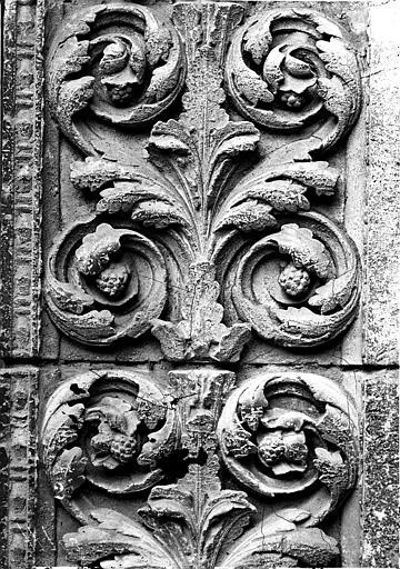 Portail Saint-Jean (ouest), détail, rinceaux