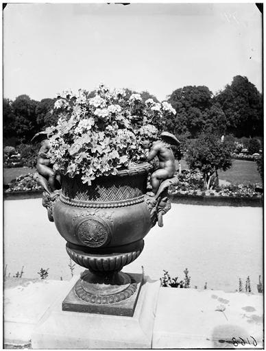 Parterre d'eau : vase