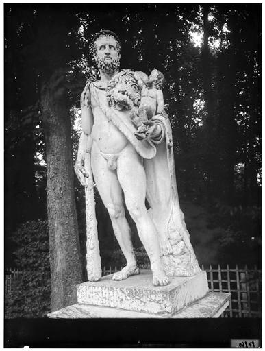 Tapis vert : Hercule
