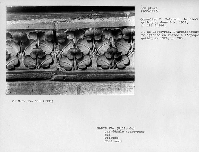 Bandeau de feuillages sculptés de la tribune côté nord de la nef