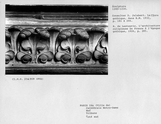 Bandeau de feuillages sculptés de la tribune côté sud de la nef